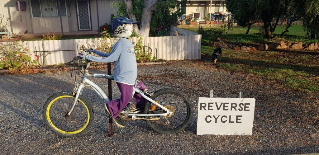 Reverse Cycle